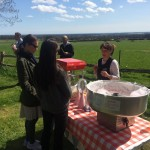 candy floss hire west sussex
